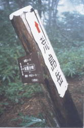 200191211.JPG