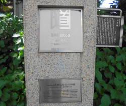 DSC02118.JPG